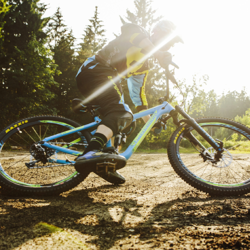 Bergamont Bicycles no Jasma